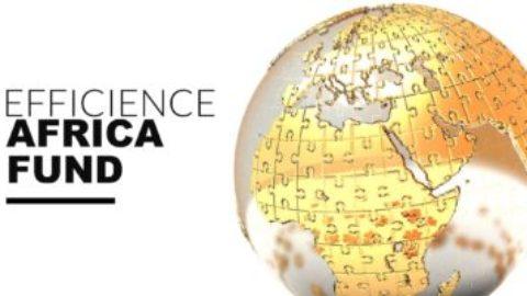 DÎNER D'AFFAIRES SPECIAL EFFICIENCE AFRICA FUND